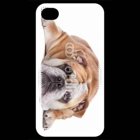 coque iphone 4 bulldog